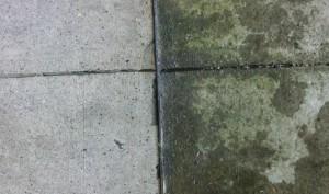 Cement Washing Sample